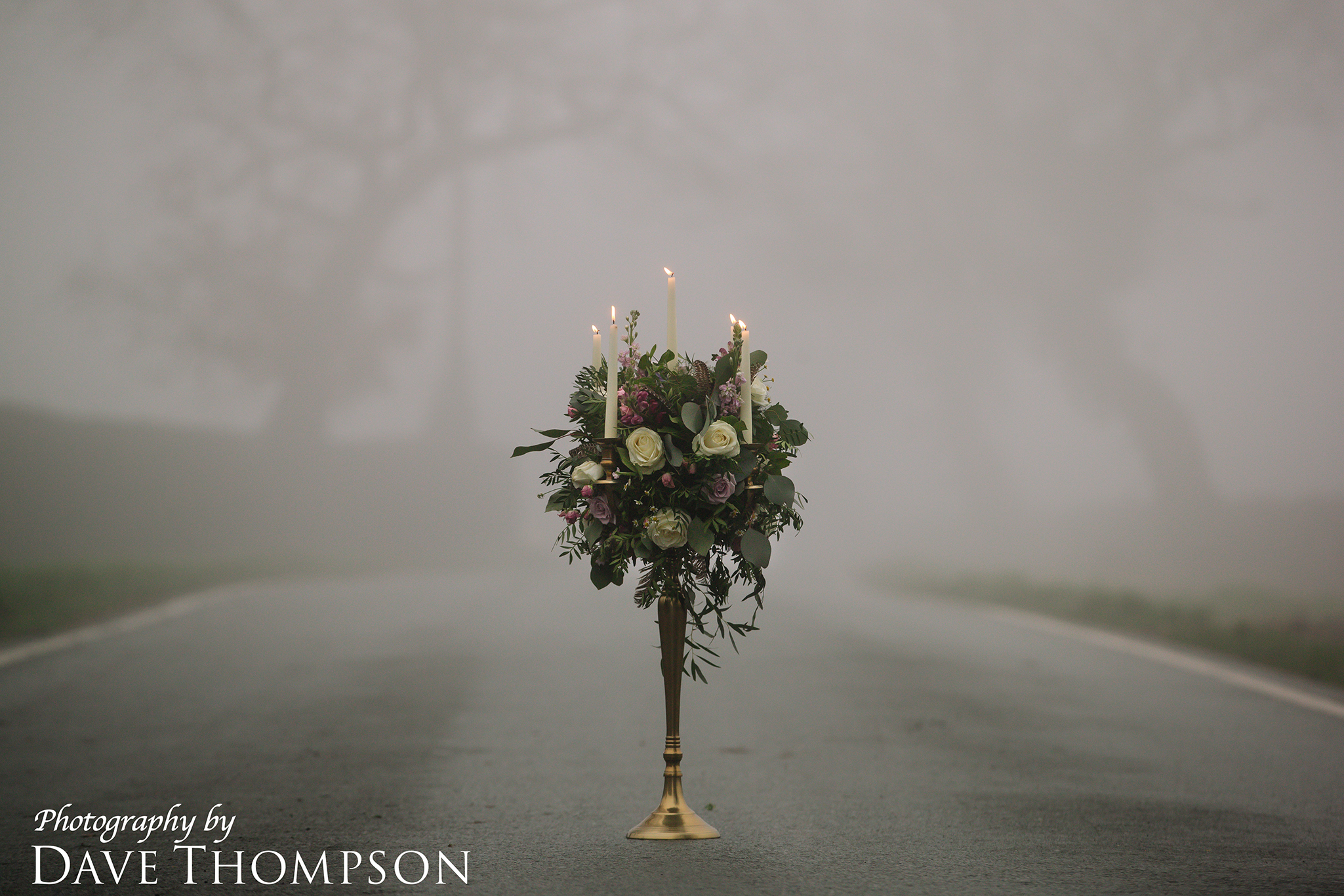 5 Photography by Dave Thompson